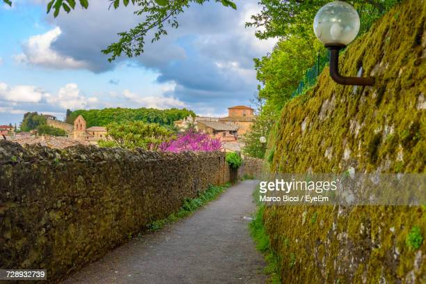 street amidst trees against sky - volterra stock photos and pictures