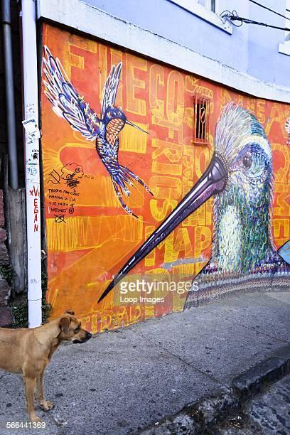 Street art by Charquiepunk in Valparaiso