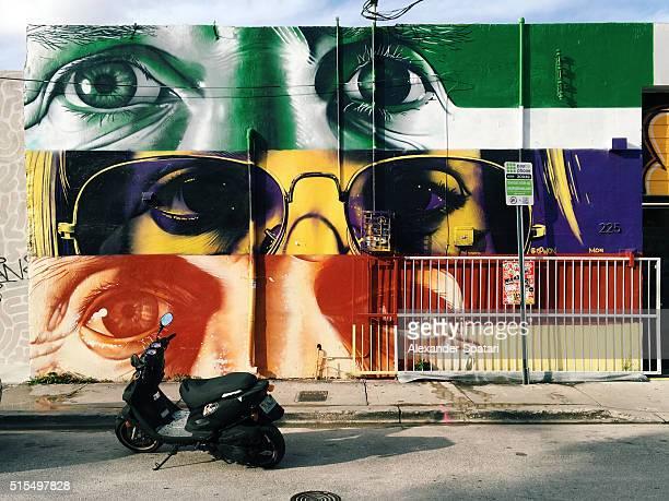 Street art in Wynwood Art District, Miami, USA