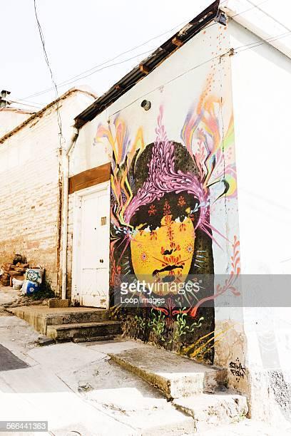 Street art portrait by Stink Fish in Valparaiso
