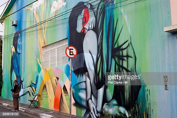 Street art Vila Madalena neighbourhood Sao Paulo Brazil