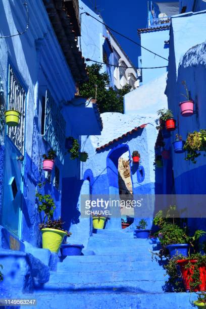 street chechaouen morocco - chefchaouen photos et images de collection
