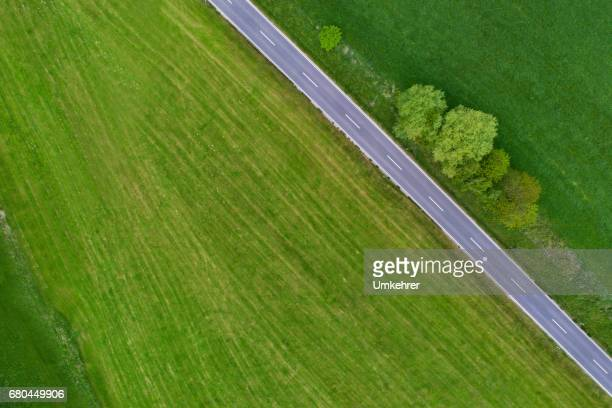 street crossing the nature - straight stock pictures, royalty-free photos & images