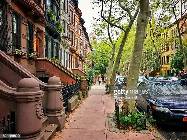 A street filled with trees and brownstones in New York City's Upper West Side