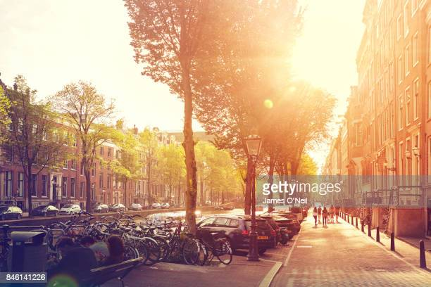 street amsterdam with sun flare netherlands