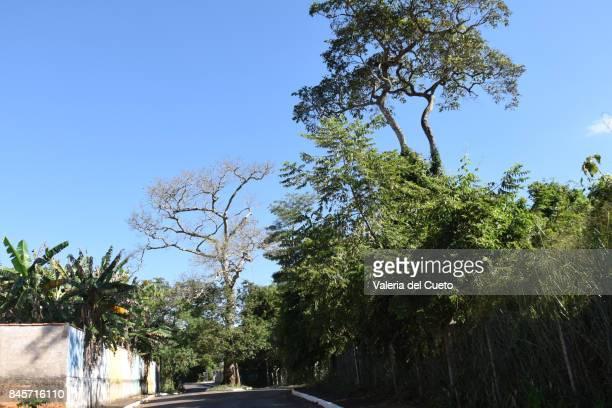 street in chapada dos guimarães - cerrado stock pictures, royalty-free photos & images