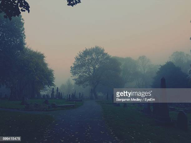 street in graveyard during foggy weather - grabmal stock-fotos und bilder
