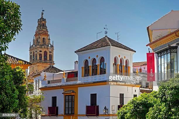 street in jewish quarter of cordoba, andalusia - スペイン コルドバ市 ストックフォトと画像