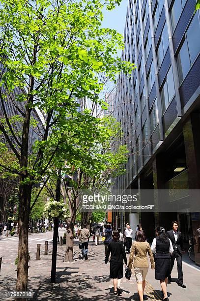 street in marunouchi - 丸の内 ストックフォトと画像