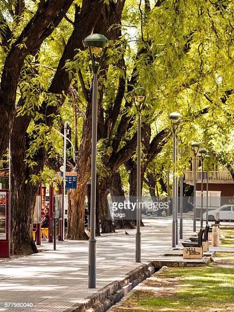 Street in Mendoza, Argentina