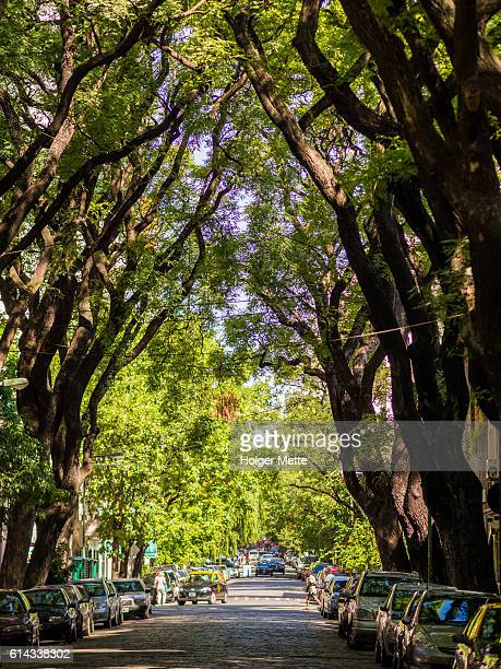 street in palermo - palermo buenos aires stock photos and pictures
