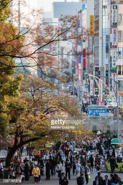 street in springtime during cherry blossom season, tokyo, japan - commercial activity stock pictures, royalty-free photos & images
