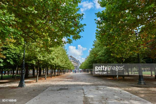 street in the park of Paris