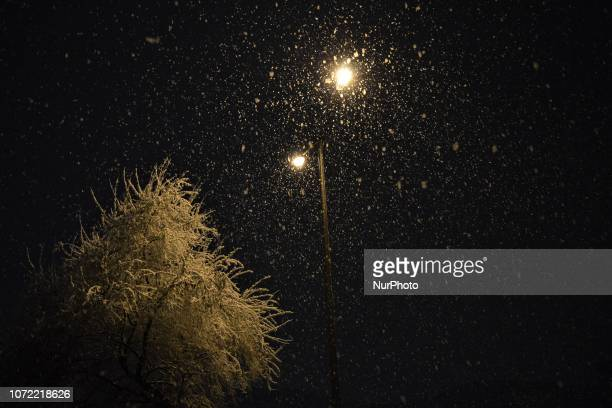 Street lamps illuminate snowflakes and branches of a tree covered in a blanket of snow during a heavy snowfall in the winter season in Ankara Turkey...