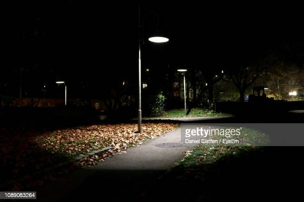 street light in park at night - luce stradale foto e immagini stock