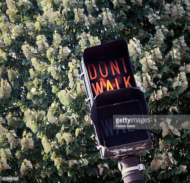 (don't walk )street light - walk don't walk signal stock pictures, royalty-free photos & images