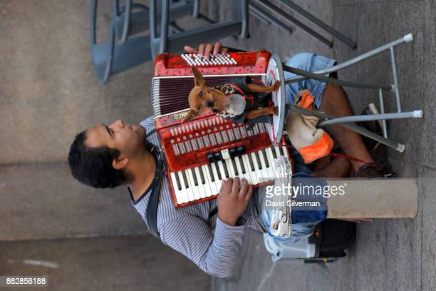 A street musician plays the accordion as his miniature pinscher dog holds a collection bowl for donations outside the the city's São Bento railway...