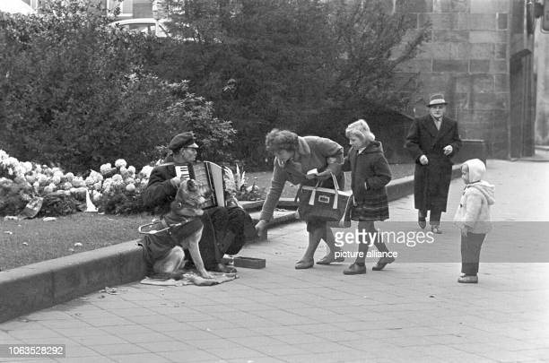 A street musician with dog and accordion plays music on 26 March 1963 in Dusseldorf and enjoys great popularity | usage worldwide