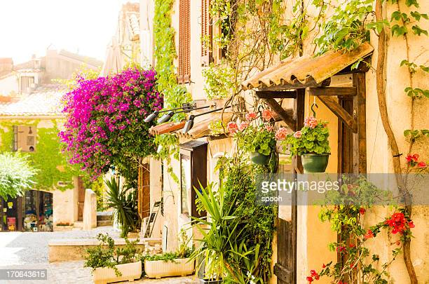 Street of provencal town full of flowers (Provence-Alpes-Cote d'Azur, France)