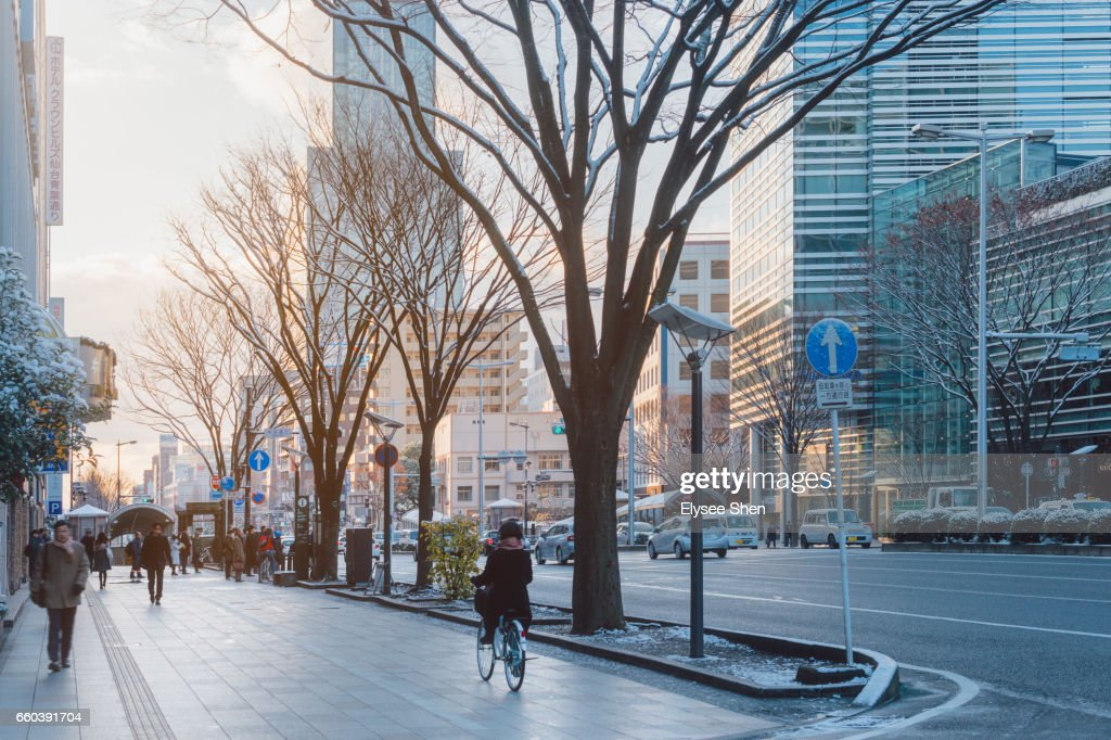 Street of Sendai : Stock Photo