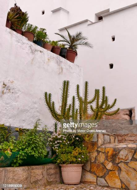 street of the jewish quarter, casas de la judería neighborhood in caceres - victor ovies fotografías e imágenes de stock