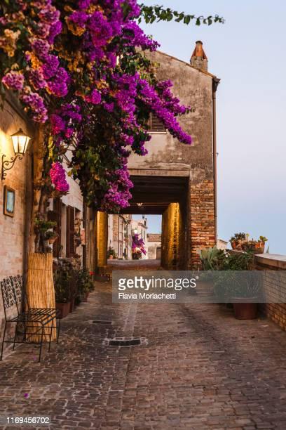 street of torre di palme, italy - marche italia foto e immagini stock
