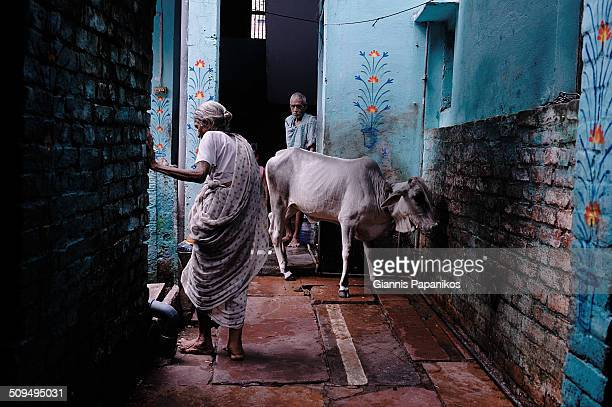Street scene at a backstreet in Varanasi, Uttar Pradesh, India.