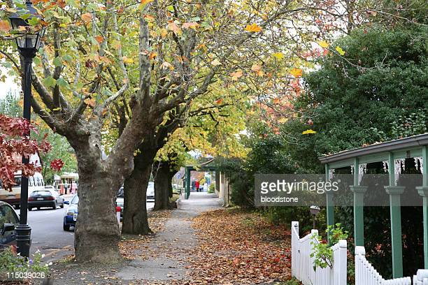 street scene in fall - adelaide stock pictures, royalty-free photos & images