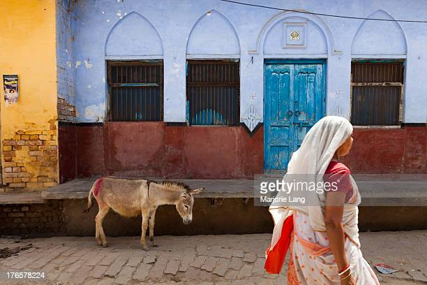 CONTENT] Street scene with a walking woman in sari and a donkey by a colorful house in Vrindavan Uttar Pradesh India
