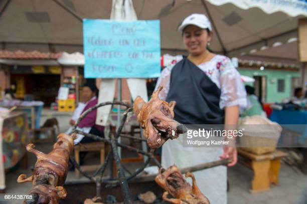 Street scene with a woman barbequing guinea pigs in a small village near the town of Otavalo in the highlands of Ecuador near Quito