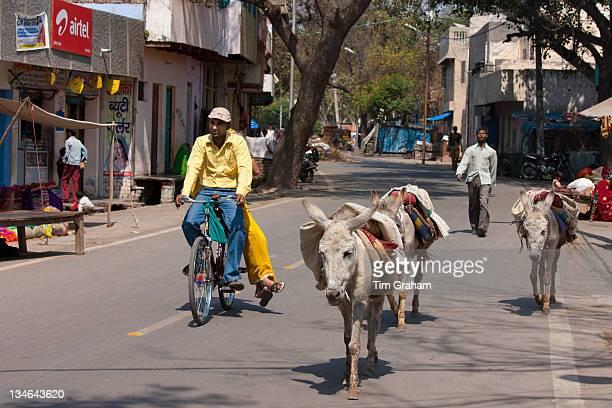 Street scene with donkeys in Agra India