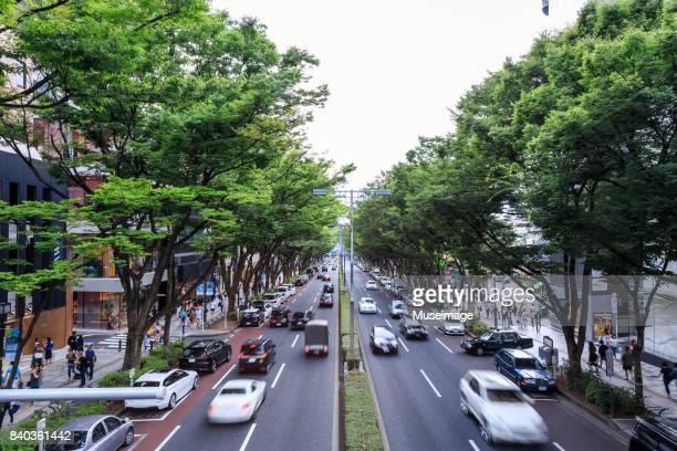 Street scene with green trees in Omotesando hills