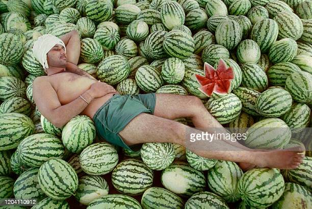 A street seller enjoys a nap on his pile of water melons in Chandigarh 13 April 2002 With the rise of temperatures due to to the start of India's hot...
