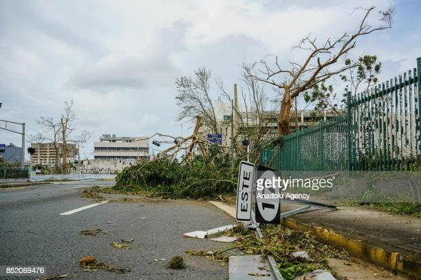 A street sign and a tree block a road and a sidewalk at the University of Puerto Rico Rio Piedras campus after Hurricane Maria at Ponce de Leon...