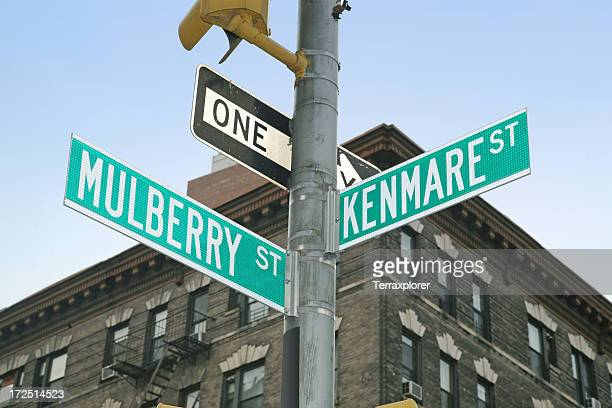 Street Signs In Little Italy District, Manhattan