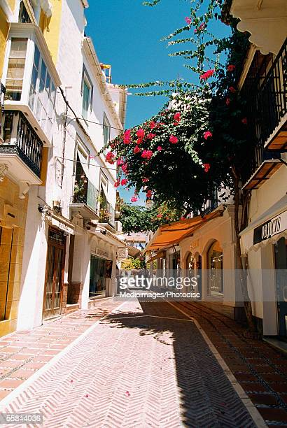 Street through old town of Marbella, Andalusia, Spain