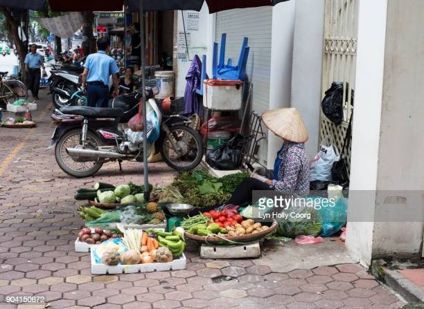 street vendor in hanoi - lyn holly coorg stock pictures, royalty-free photos & images
