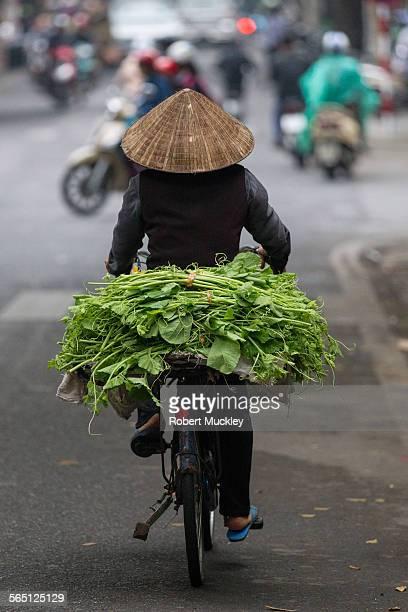 Street Vendor on Bicycle