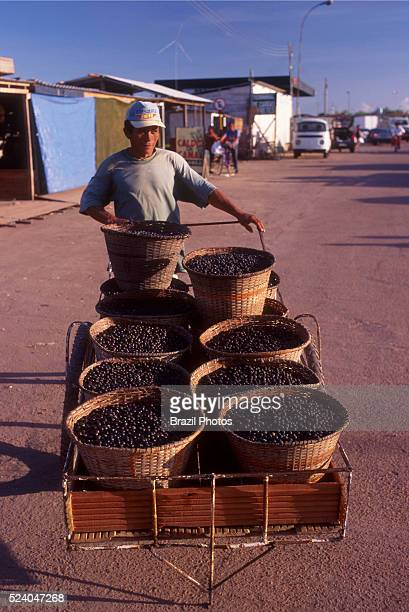 Street vendor selling acai bellies tropical fruit from Amazon rainforest Porto Igarape das Mulheres city at Amapa State northern Brazil