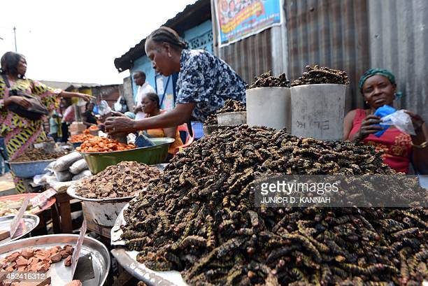 Street vendors sell caterpillars on July 9 2014 in a street of the Ngaba district of Kinshasa At Gambela market in Kinshasa people can find insects...