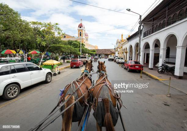 street view from horse carriage in granada, nicaragua - nicaragua fotografías e imágenes de stock