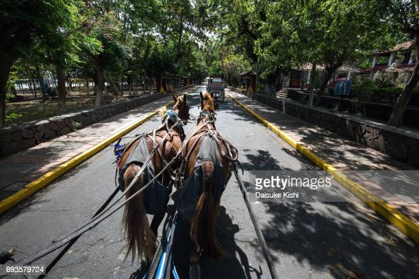 Street view from horse carriage in Granada, Nicaragua
