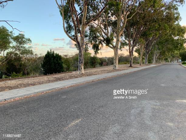 a street with a view - suburban stock pictures, royalty-free photos & images