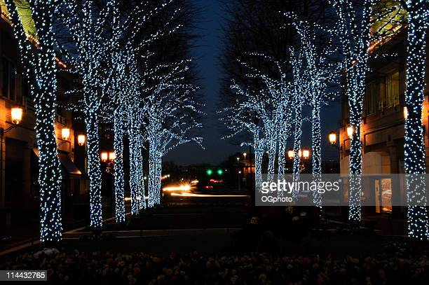 street with christmas decorations - avenue stock pictures, royalty-free photos & images