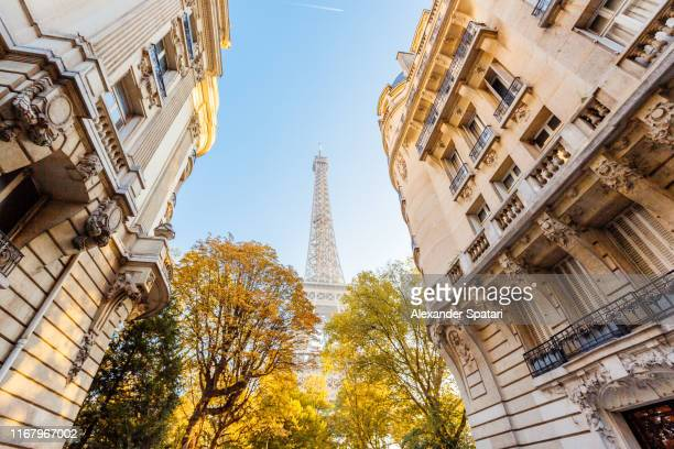 street with eiffel tower and autumn trees, paris, france - grand angle photos et images de collection