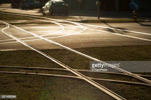 Streetcar rail tracks reflecting the sunset light
