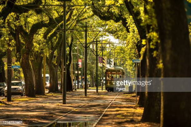 streetcar travels along st. charles avenue in new orleans louisiana - new orleans stock pictures, royalty-free photos & images