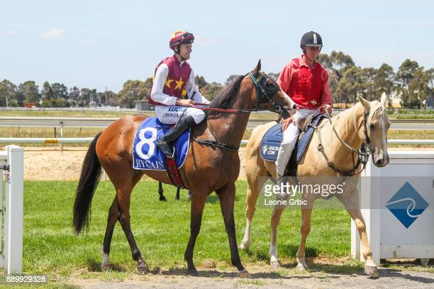 Streets of Avalon ridden by Clayton Douglas returns after winning the Edge associates Temp Fence Hire 3YO Maiden Plate at Bairnsdale Racecourse on...
