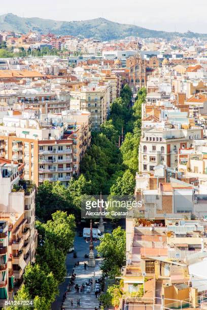 streets of barcelona, high angle view, catalonia, spain - the ramblas stock pictures, royalty-free photos & images