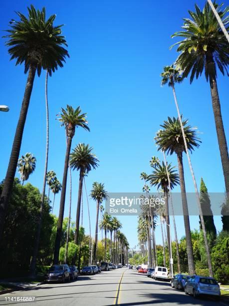 ビバリーヒルズの街。カリフォルニア州ロサンゼルス - サンタモニカ ストックフォトと画像
